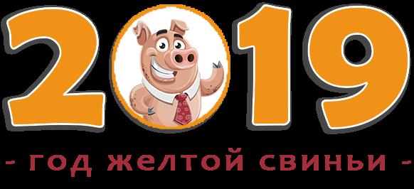 свинья в кружке поздравляет с 2019 годом